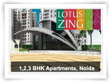 Lotus Zing